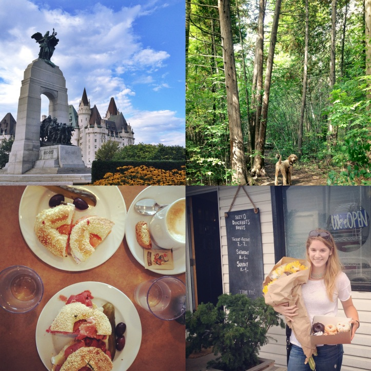 The National War Memorial; dog walks in the city; brunch at the Ottawa Bagel Shop; picking up doughnuts at SuzyQ!