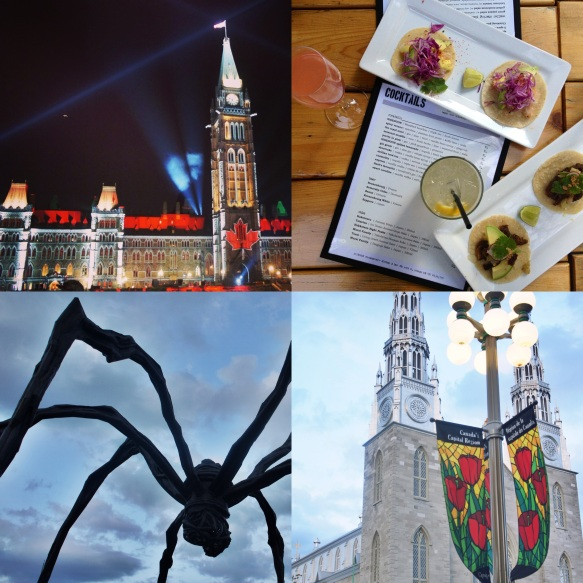 Mosaika on the Hill; Friday fun at Sidedoor; Maman; Notre Dame