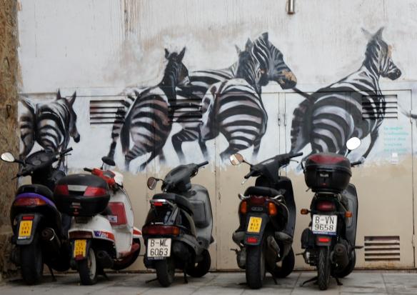 barcelona's zebras