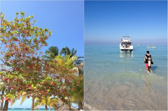 jamaica3