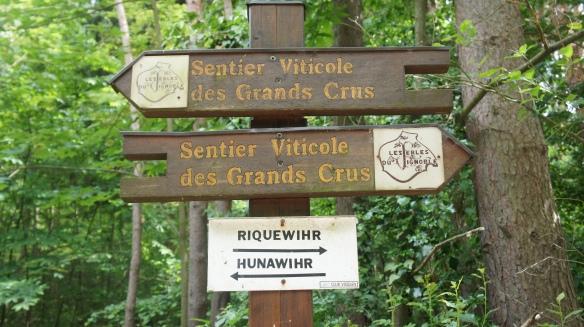 sentier vinicole